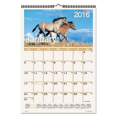 AT-A-GLANCE® Horses Monthly Wall Calendar