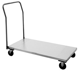 Model XP - Stainless Platform with Removable Handle