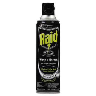 Raid® Wasp & Hornet Killer