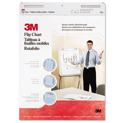 3M Professional Flip Chart